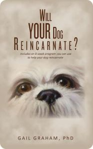 Will Your Dog Reincarnate